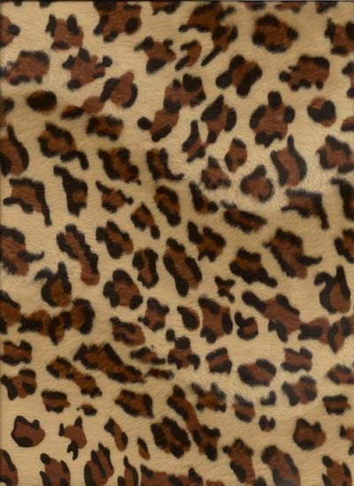 Cheetah Black